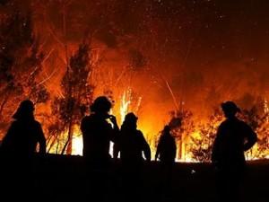 2013-nsw-bushfires